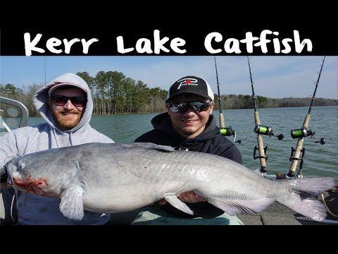 Buggs Island Catfish Fishing