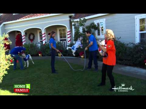 Lucy Pet Foundation on Home & Family - Part 1