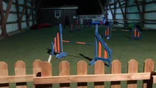 Ninja agility training