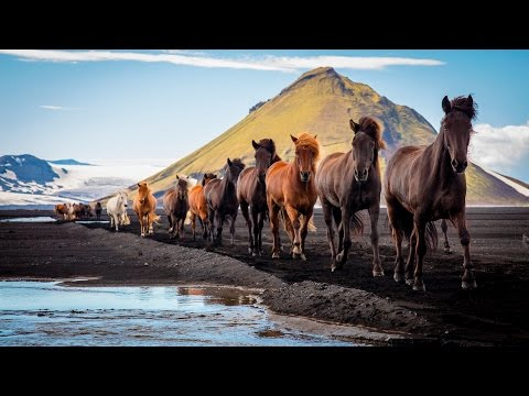Iceland + Greenland Photography Tour