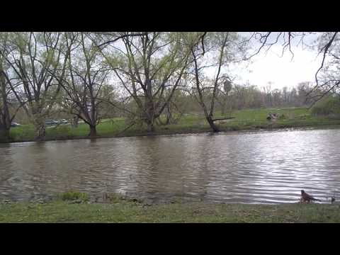 Etobicoke Creek, Early May 2017, High Water?, Marie Curtis Park, Etobicoke, Toronto, Ontario, Canada