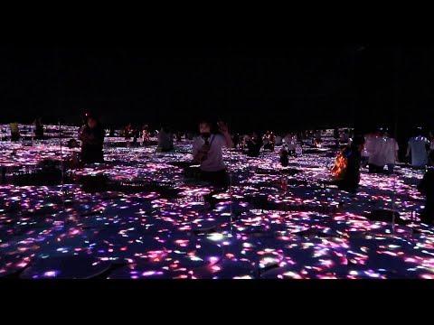 Coolest Museum EVER - Mori Digital Art Museum in Tokyo