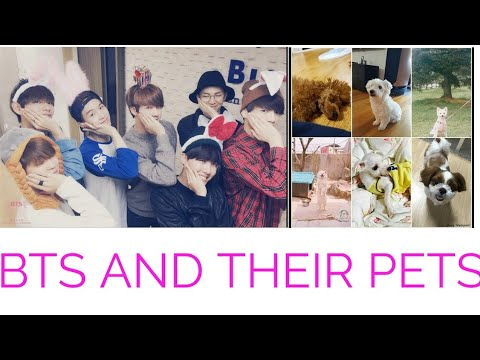 BTS PETS(ALL ABOUT THEIR PETS)