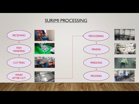 HOW IT'S MADE SURIMI  - SURIMI PRODUCTION