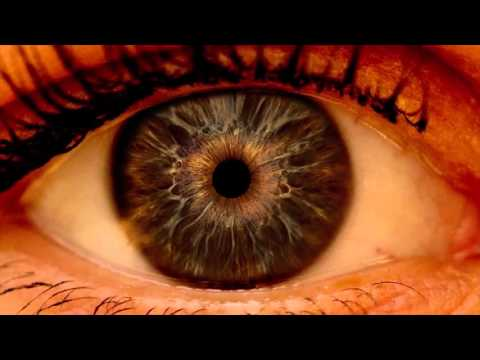 """""""What causes glaucoma?"""" By Richard P. Holm, MD"""