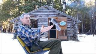 Martin's Cabin Part 6 The Finnicky Gray Jay