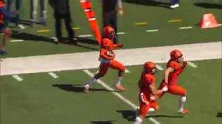 Highlights: 2019 Illinois Spring Football Game | B1G Football