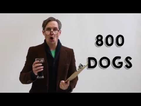 Calgary Humane Society Invites You to Break a World Record