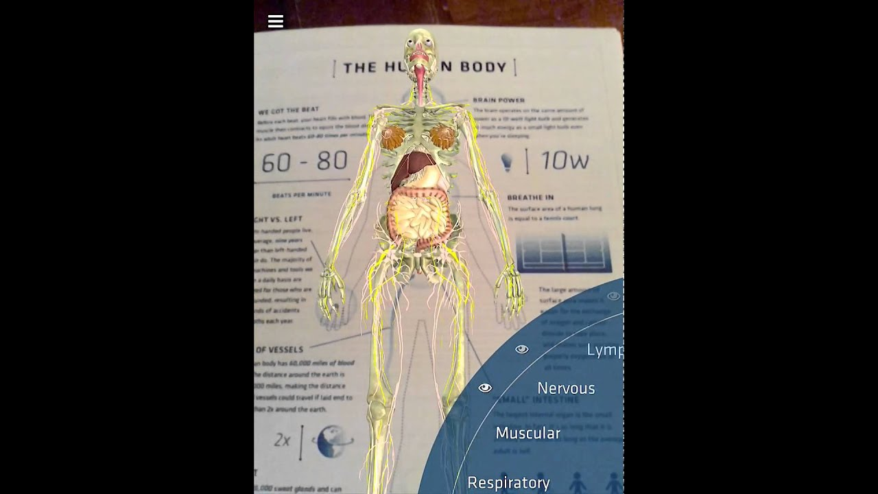 New Update to DAQRI\'s Anatomy 4D App- The Human Body - YouTube