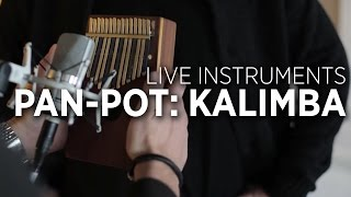 Pan-Pot Studio Interview: Using A Kalimba In Your Productions