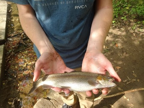 Fall Stocked Trout Fishing with Corn -- Tutorial Included (Northeast Philadelphia, PA)
