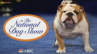 National Dog Show returns to NBC this Thanksgiving