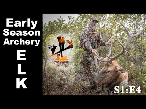 Adventure Elk - DIY Colorado Archery Elk Hunt 2020 - The GRAAW Life Episode 4