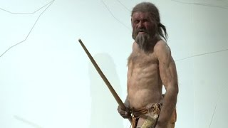 He's over 5000 years old, but fully preserved mummy Ötzi could hold...