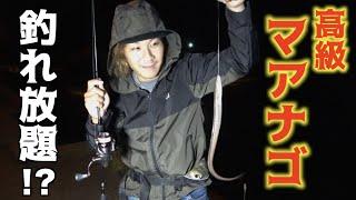 #1 高級マアナゴが無限に釣れると聞いて行ってみたら・・・