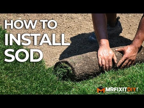 How To Install Sod | A DIY Guide