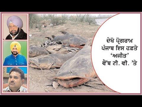 'Punjab this week' Spl. current affairs programme on Ajit Web Tv.