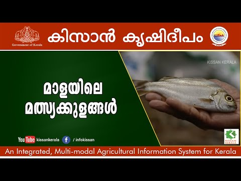 Story of Govt. Fish Farm, Mala, Thrissur