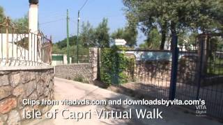 Isle of capri virtual walk clips