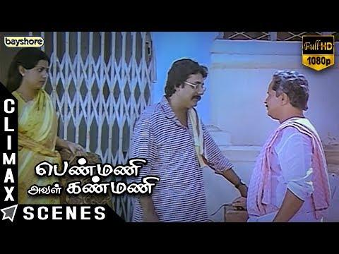 Penmani Aval Kanmani - Climax Scene | Prathap Pothen | Seetha | Visu