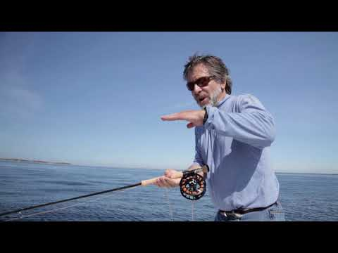 Saltwater Fly Fishing - Offshore & Near Shore