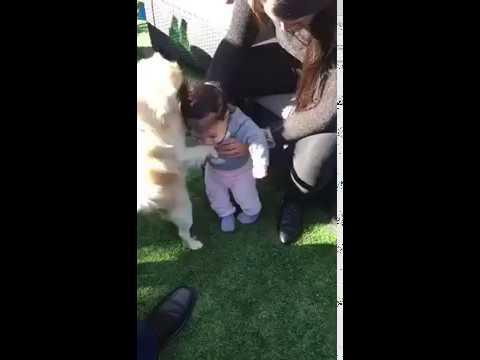 sweet baby and her small dog playing :]]]