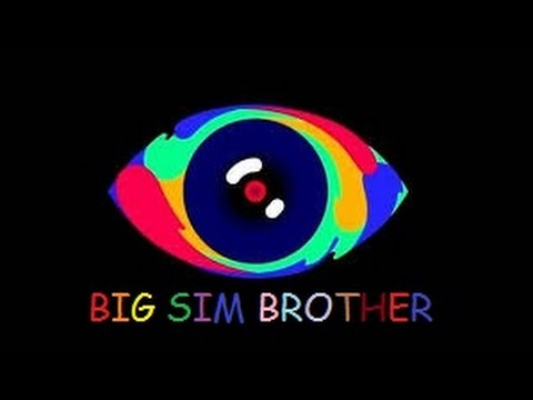 Big sim brother | La guerra : Gala 1