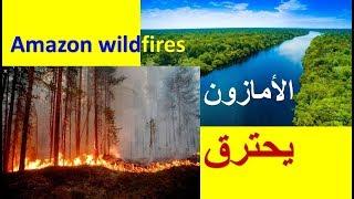 حرائق هائلة تلتهم غابات #الأمازون #Amazon wildfires .. Amazon rainforest