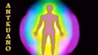 Tutte le forme fisiche, viventi e non, sono tenute insieme e contro...