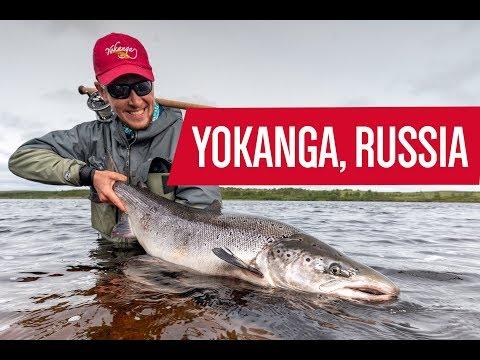 Yokanga River, Russia - Fly Fishing For Atlantic Salmon