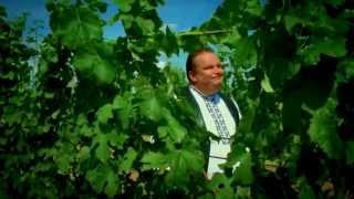 MORAVA MÁ NOVÝ VIDEOKLIP -  Franta Uher Ludvík Čihánek Dalibor Sokol