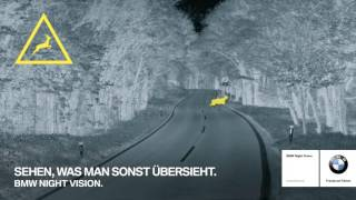 BMW Nightvision