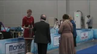 17.03.2017 Евразия-1, ринг левреток