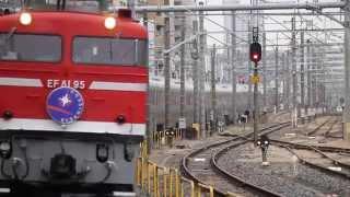 EF510の不調のためEF81 95が代走したカシオペアを撮るために、尾久駅に...
