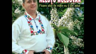 Gambar cover Nelutu Moldovan - M-o rugat vecina mea frumos