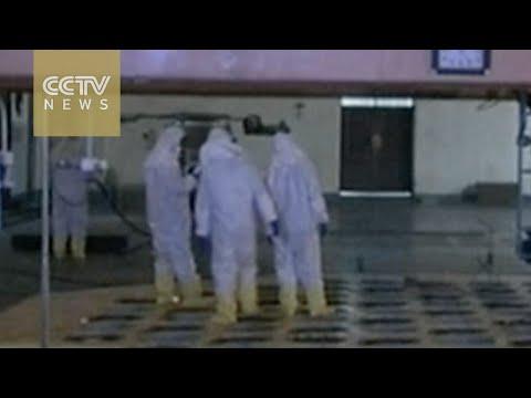 Japanese media: Pyongyang resumes plutonium production