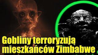 Mieszkańcy Zimbabwe są regularnie atakowani przez gobliny!