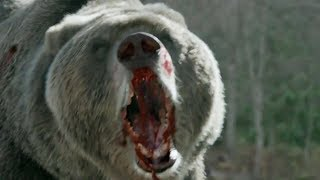 Into the Grizzly Maze: Red Band Fan Trailer