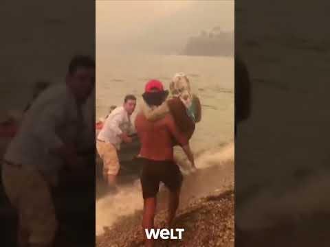 Download TÜRKEI IN FLAMMEN: Bodrum - Urlauber und Einwohner fliehen vor Feuer   WELT #shorts