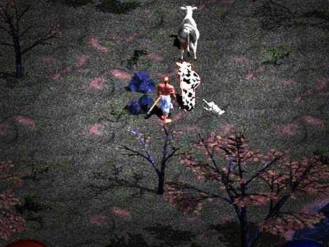 Diablo Hellfire - Secret Hidden Cow Quest - YouTube