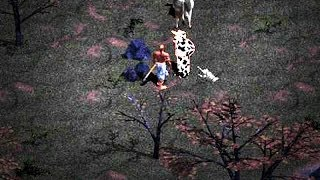 Diablo Hellfire - Secret Hidden Cow Quest