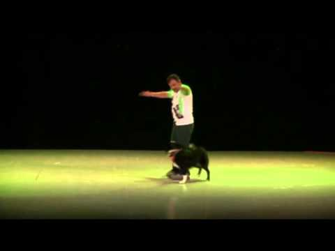 Dog Dancing en Mexico