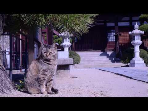 日本の景色 広島県尾道市Part1 The scenery of Japan Onomichi city Hiroshima