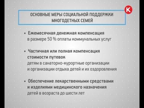 КРТВ. Основные меры социальной поддержки многодетных семей