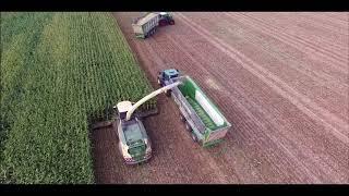 Wir bauen uns ein Mais Berg Maishäckseln  Maisernte Maissilo  2018