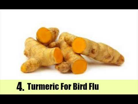 6 Effective And Simple Herbal Remedies For Bird Flu