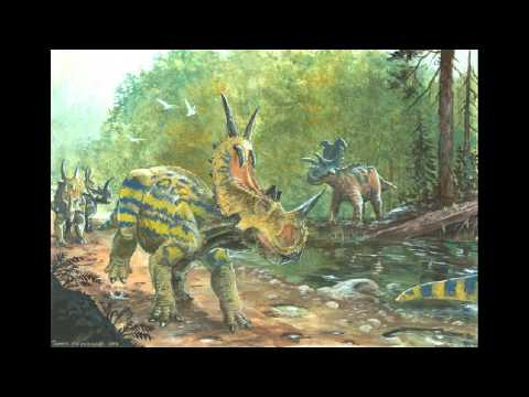 Top 10 Most Beautiful Ceratopsian Dinosaurs