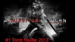 #1 Tomb Raider 2013 Волосы просто бомба