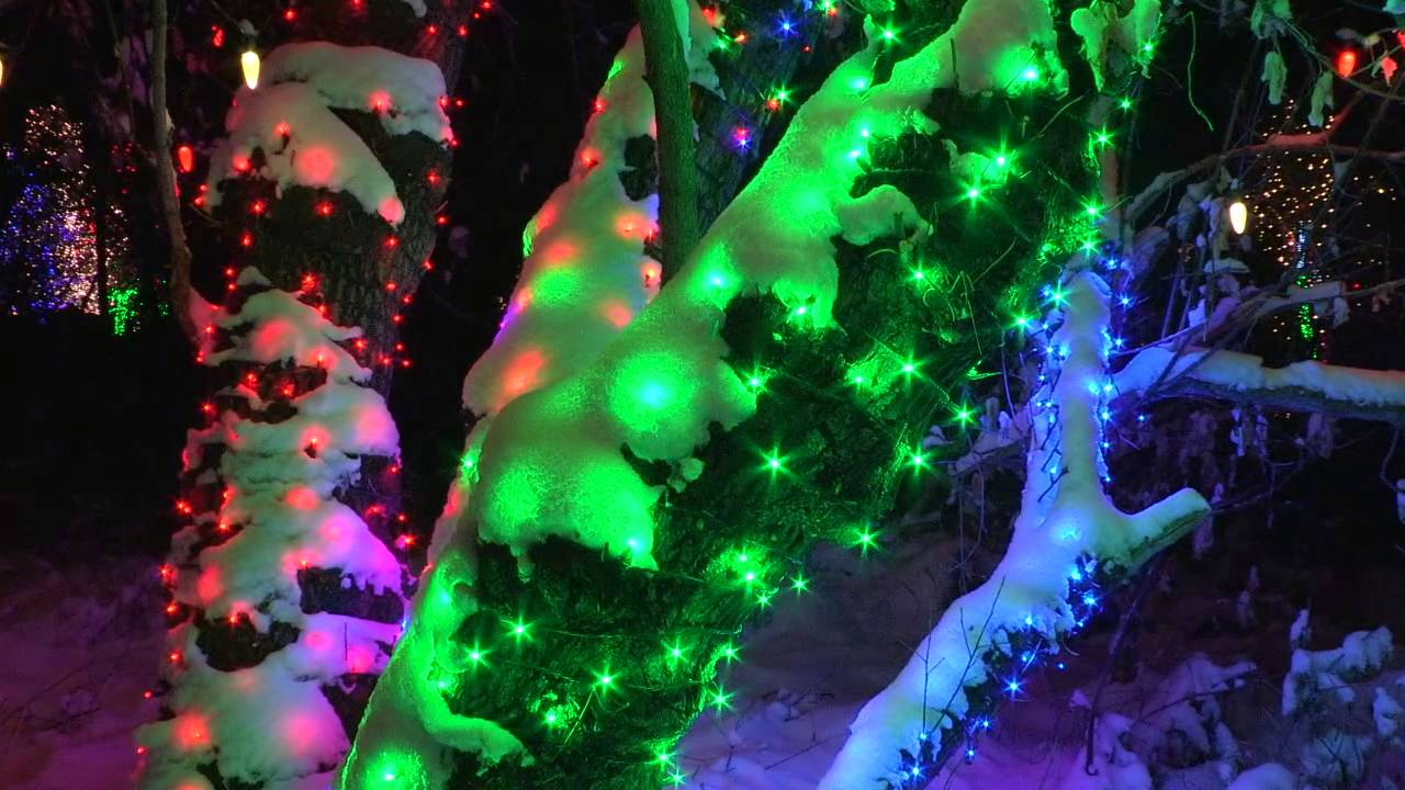 2013 Trail Of Lights At Denver Botanic Gardens At Chatfield