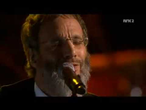 Yusuf Islam - Peace Train - OUTSTANDING!